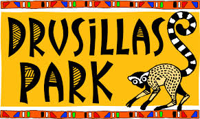 Drusillas Park Voucher Codes