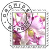 Orchids by Post Voucher Codes