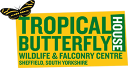 Tropical Butterfly House Voucher Codes