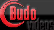 Budovideos Voucher Codes
